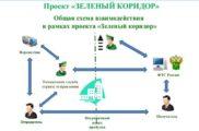 Проект «Зеленый коридор»